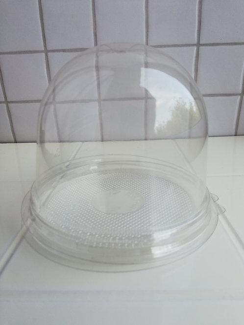 Купол с прозрачным дном