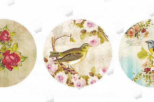 Открытки птицы ретро