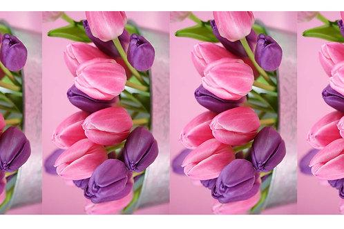 Тюльпаны в прямоугольнике