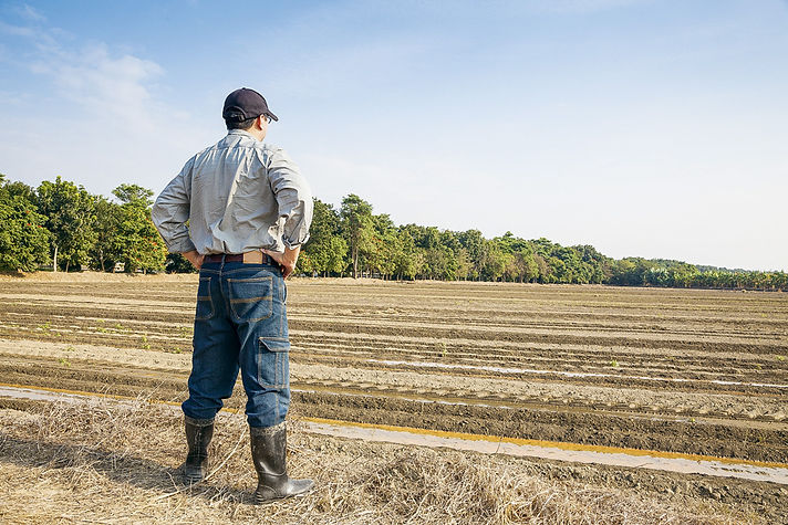 agriculteur-celibat.jpg