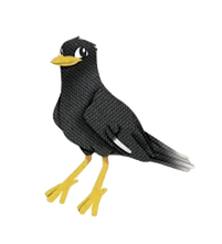 Little-Mynah-No-Background.png