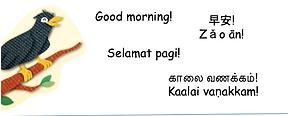 Read aloud good morning.png