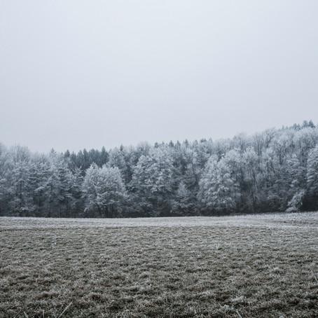 Vitamin D im Winter tanken mit Infrarot