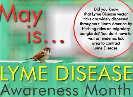FREE MayMassage Upgrade in honor of Lyme DiseaseAwareness Month!
