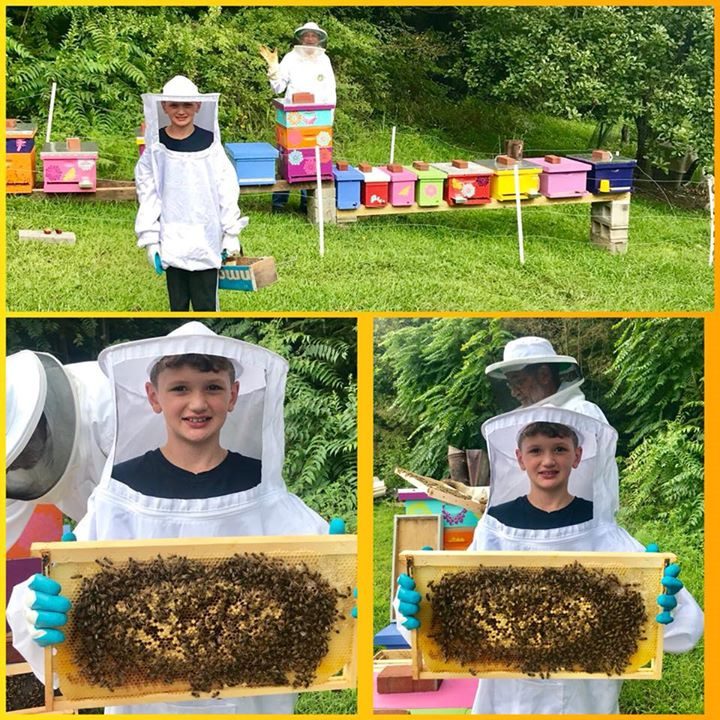 Junior Beekeeper at Honeybee Bliss Apiary