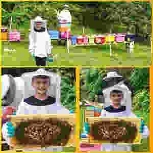 Junior Beekeeper at Honeybee Bliss Apiary