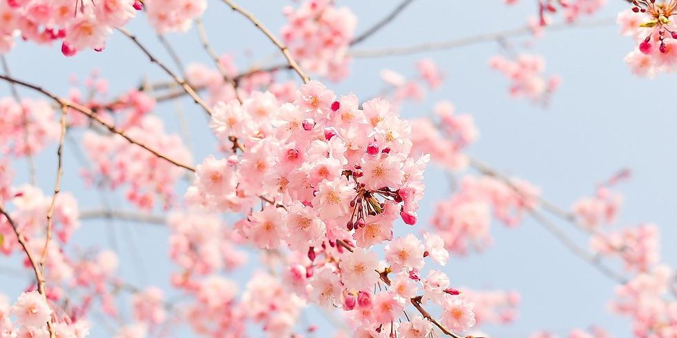 Vacances de printemps