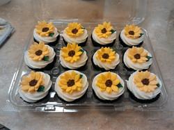 Cupcakes Daisy Cupcakes