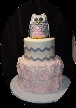 Owl Theme Baby