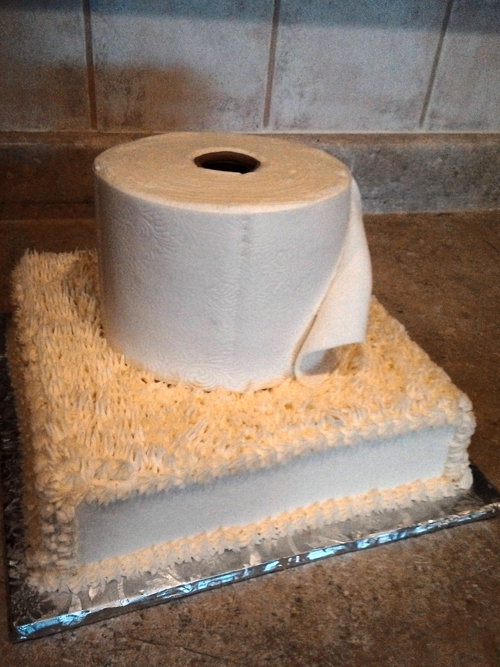 Toilet paper Birthday- Holy Crap! You're