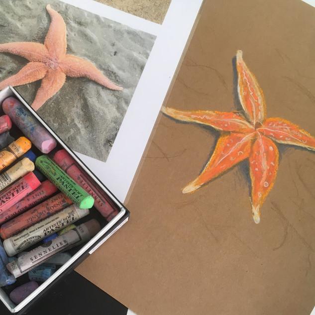Satrfish drawn with pastel chalks