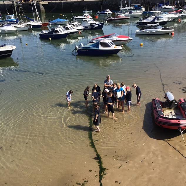 Templeton School on Art-Sci Field trip in Tenby Harbour