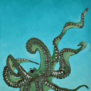 """""""Keeping an Eye on You"""" Octopuss"""