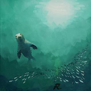 Pembrokeshire Grey Seal