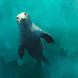 Grey Seal oil painting