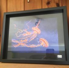 Fire Down Below - Jellyfish