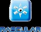 rascular_logo_edited.png