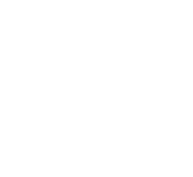 complex logo official white nt.png