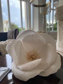 Living Room Magnolia