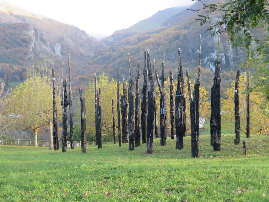 Amezketa, gipuzkoa,otoño, bosque