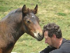 Comunicación con los caballos,la Rioja,