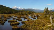 Crece la conciencia sobre el valor de las turberas de Chile