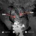 Satélite Francés PLEIADES descubre dos domos en volcán Nevados de Chillán.