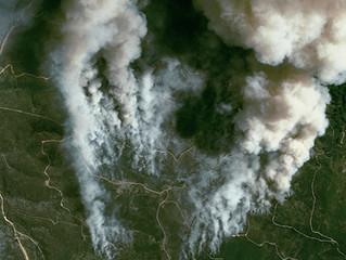 Incendios forestales en Chile. Asignación de imágenes, recolección y entrega: todo en el mismo día