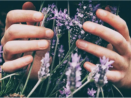 5 Ways To Use Lavender