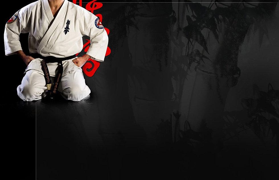 Kyokoshin karate wallpaper 1500x966 2826