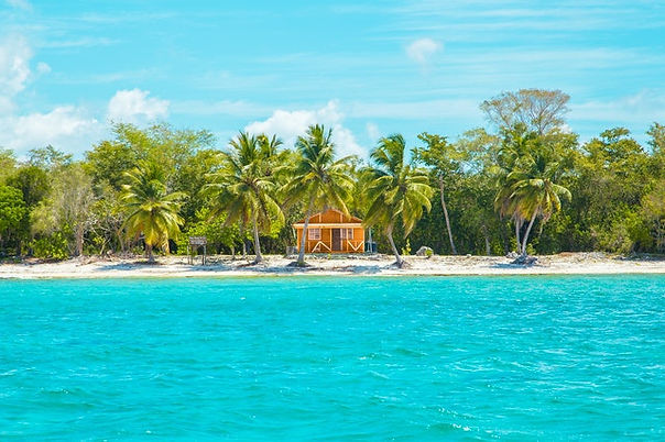 photo-of-wooden-cabin-on-beach-near-coco