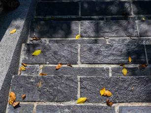 階梯進化論 | 戶外階梯設計方案