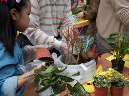 社區組盆活動 | 花草中的水泥盛會