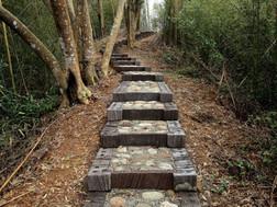 和山一起散步 | 生態階梯步道工法