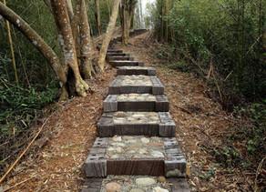 和山一起散步   生態階梯步道工法