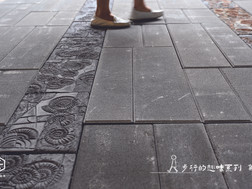 作品 // 步行的趣味系列 | 菊石