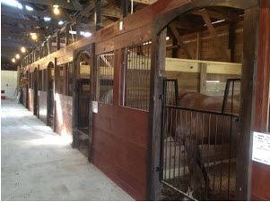 Apex Equestrian Center.jpg