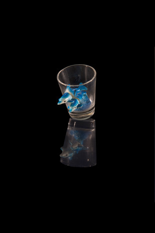 Shot glass with two dolphins, Lagos, Portugal (2018).
