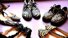 This is what Pandora thinks about animalier shoes