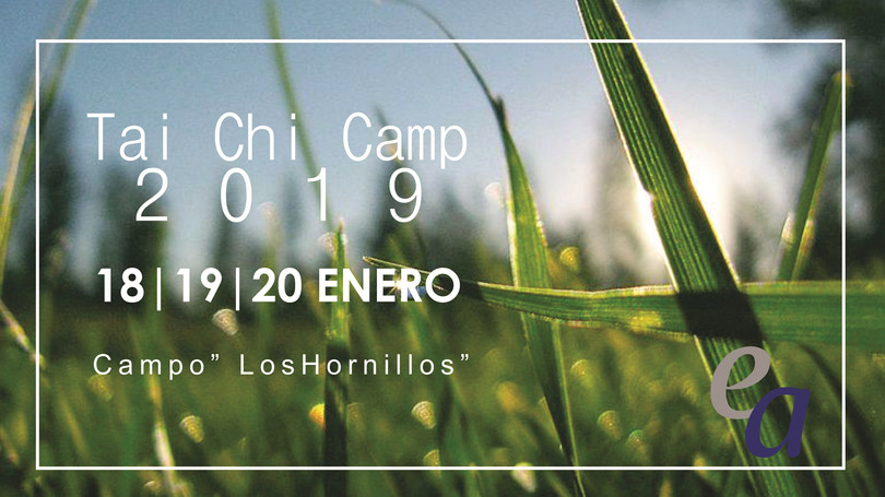 Tai Chi Camp 2019