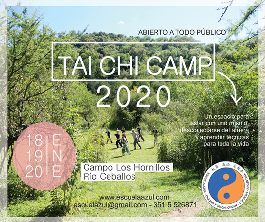 Tai Chi Camp 2020