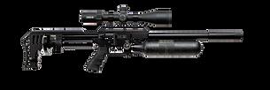carabines pcp