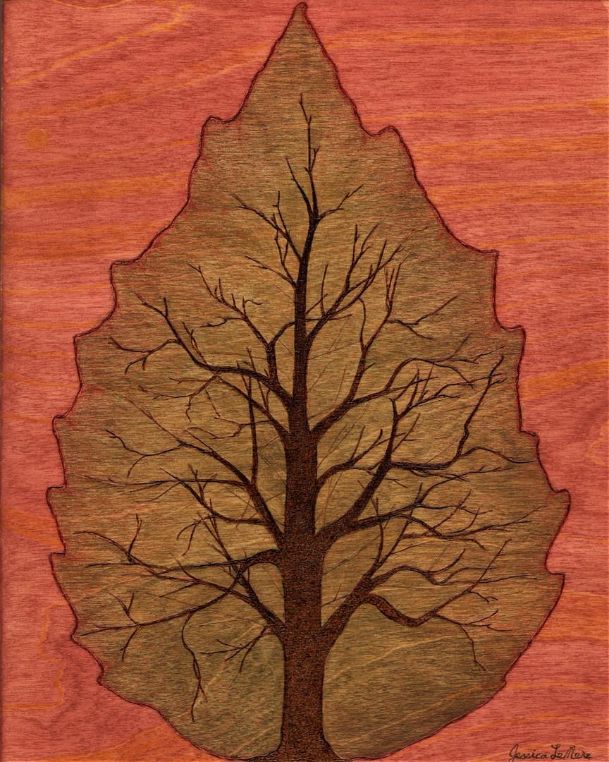 Tree Of Leaf