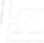 STV_Logo_i150_White.png