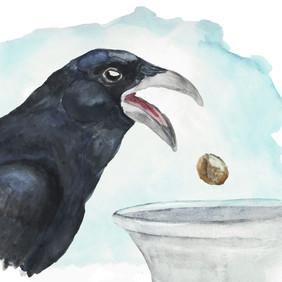 Aesop's Crow_2.jpg