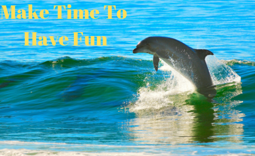 Time For Fun: Lessons From The Dolphin