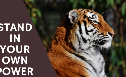 Stand In Your Own Power With The Tiger