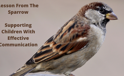 Lesson From The Sparrow – Supporting Children with Effective Communication