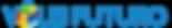 Logo-VF-NOVO2.png