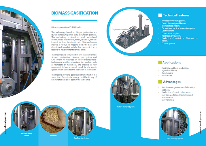 BIOMASS GASIFICATION.png